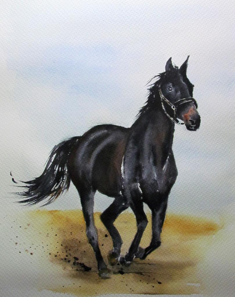 Cheval -  Aquarelle