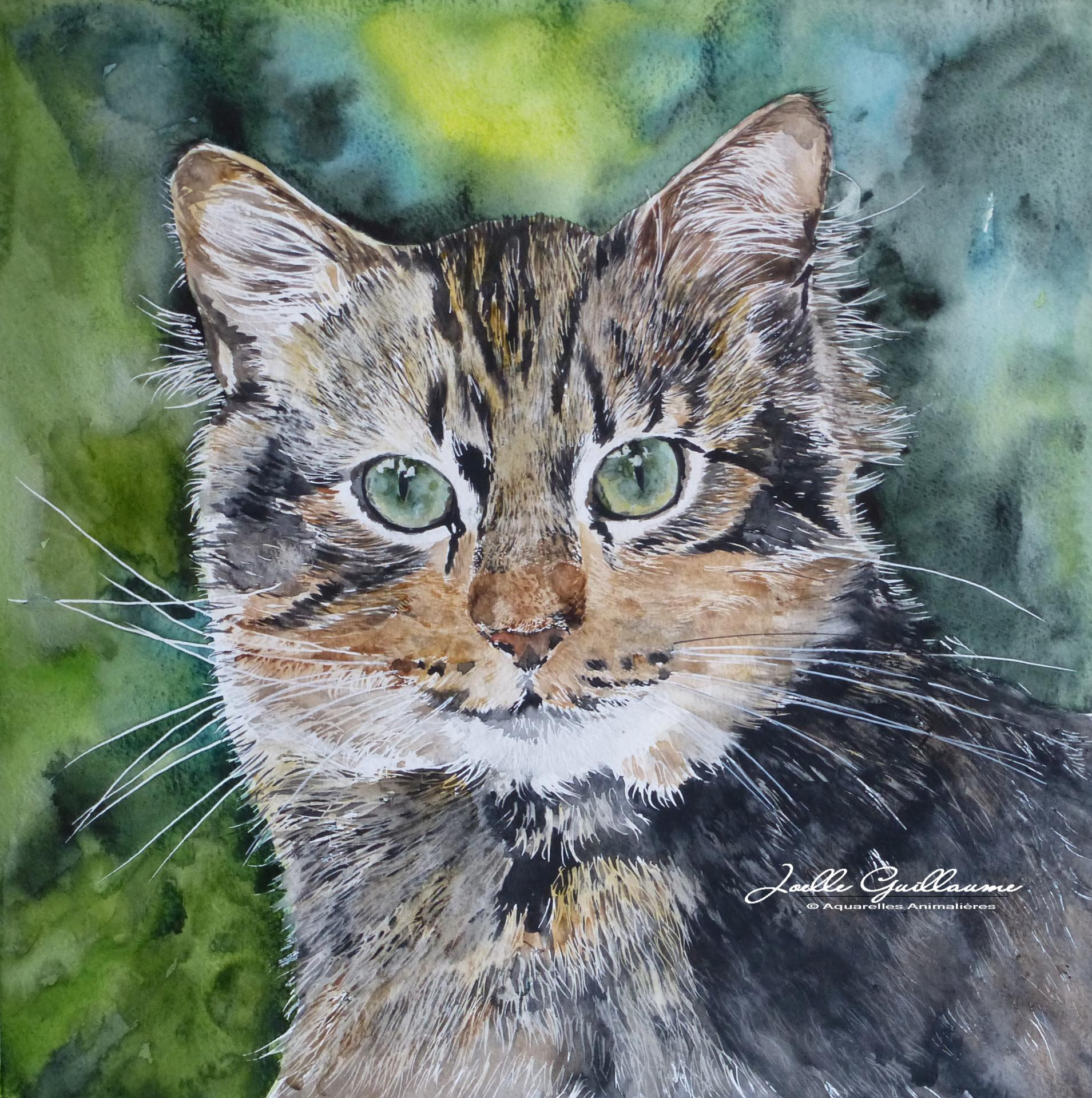 Chat Forestier - Aquarelle